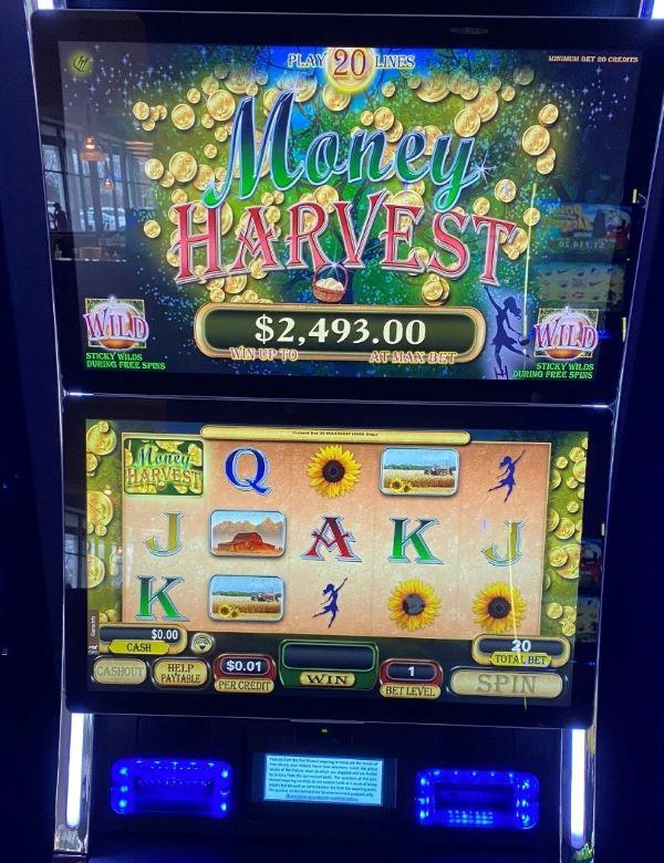 Money Harvest slot machine 2