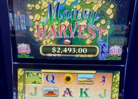 Money Harvest slot machine thumbnail 1