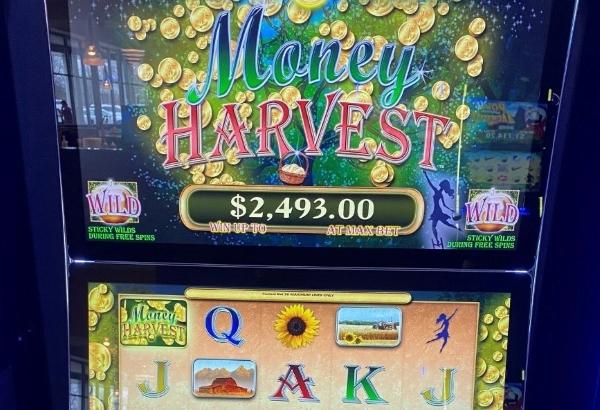 Money Harvest slot machine thumbnail 1
